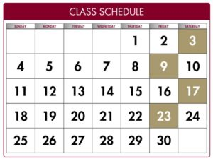 Executive MBA course schedule